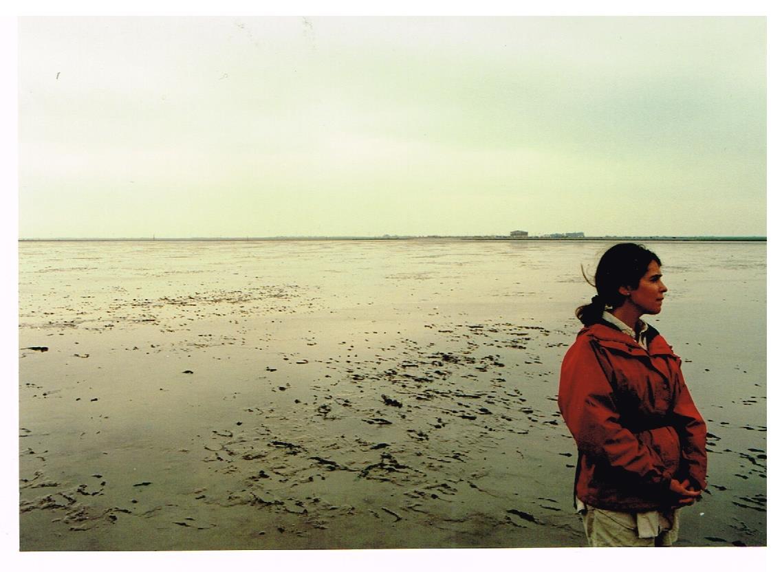 Farsickness--Wattenmeer
