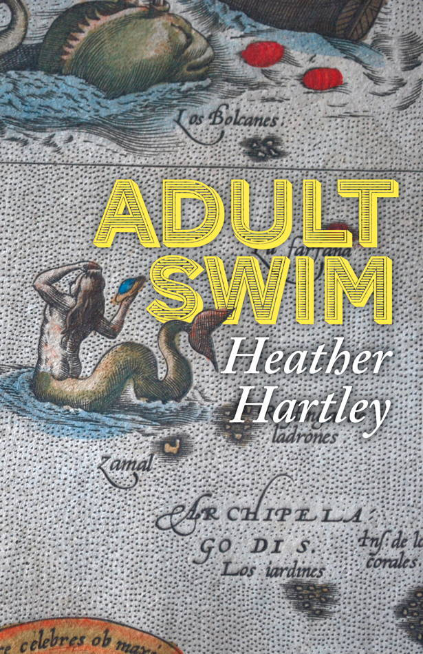 Cover of Hartley's most recent book.